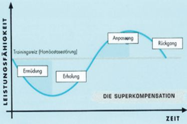 Fitnessstudio Perfect Body Dresden - Trainingsprinzip - Superkompensation